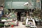GREEN FINGERS | 三軒茶屋